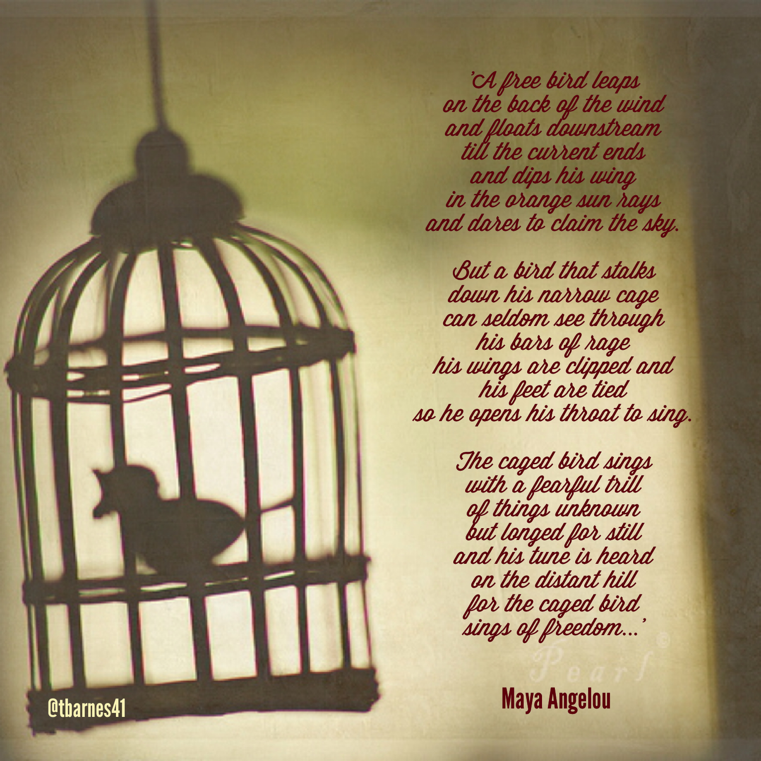 Quotes I Know Why Caged Bird Sings