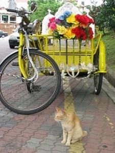 Colourful rickshaws at Malacca