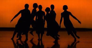silhouette of people dancing on brown wooden floor