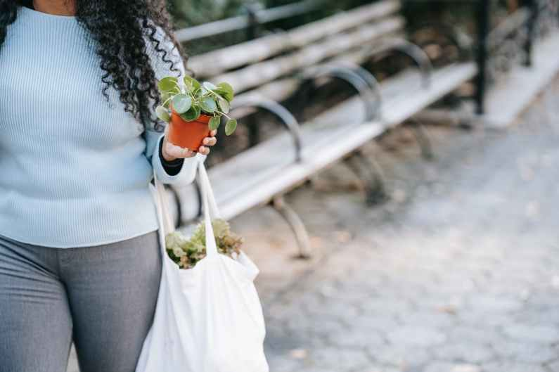 crop unrecognizable black woman carrying potted plants on street