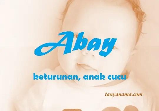 arti nama - Abay