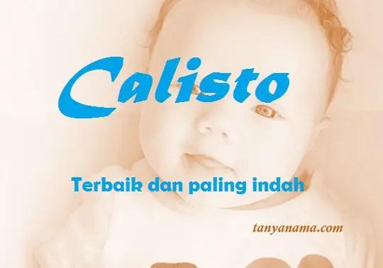arti nama calisto