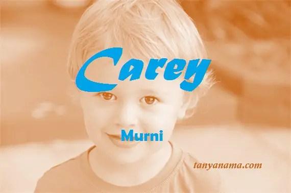 arti nama carey