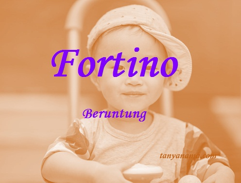 arti nama fortino