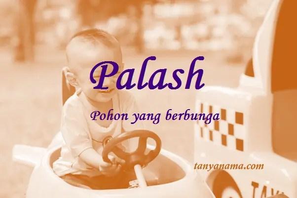 arti nama palash