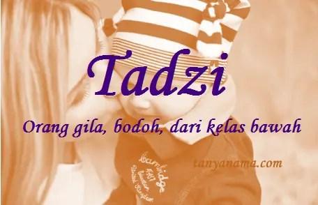 arti nama Tadzi