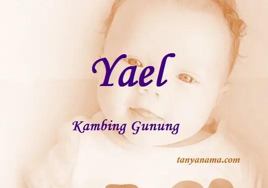 arti nama yael