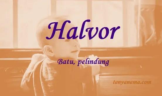 arti nama Halvor