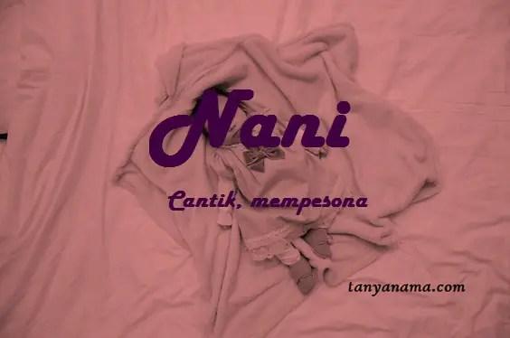 arti nama Nani