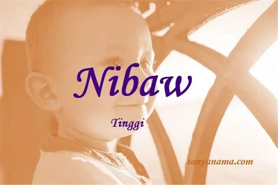 arti nama Nibaw