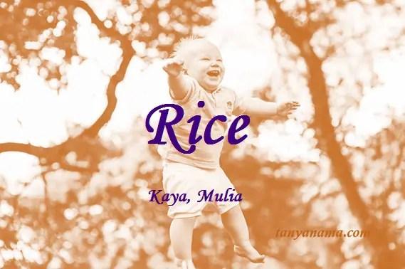arti nama Rice