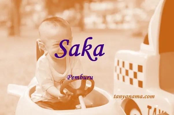 arti nama Saka