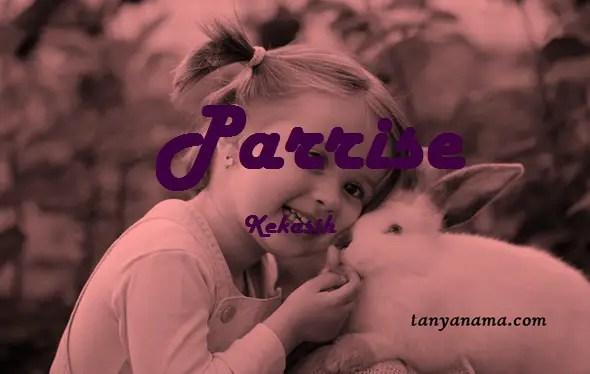 arti nama Parrise