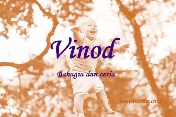arti nama Vinod