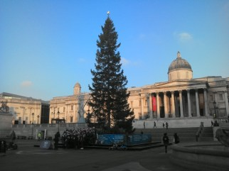 Trafalgar Square, London. The Norwegian Spruce is donated each year by the City of Oslo, since 1947