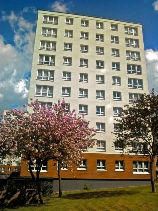 Hackney May 2013