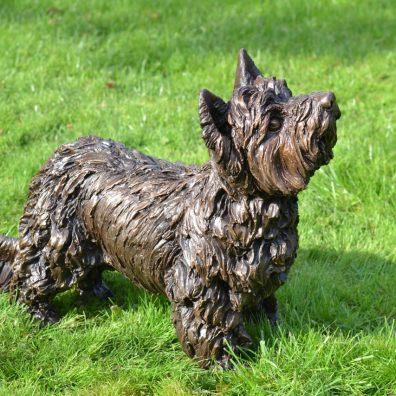 Standing Yorkshire Terrier
