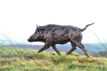 Wild Boar 9 - Tanya Russell Sculpture
