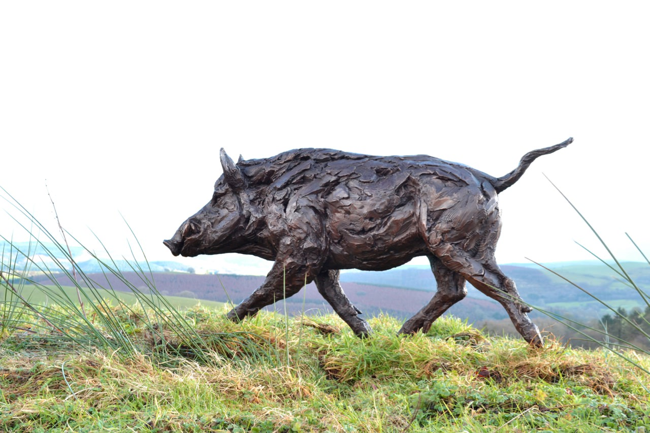 Wild Boar 9 - Tanya Russell Sculpture