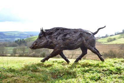 Life-sized Wild Boar sculpture right side view Wildlife Artist of the Year Show