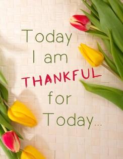 thankful-1081614_1280
