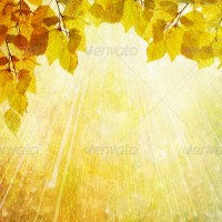 Autumn background yellow red lieves bokeh with place for text 10 - Stock Photo | PhotoDune