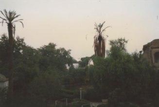 8d Monastry Garden