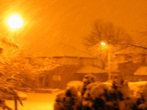 Orange Snow 003