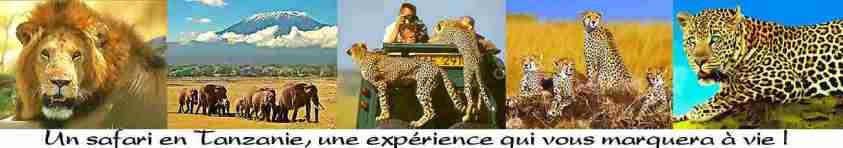 us et coutumes en tanzanie. Voyage Tanzanie, présentation, guide, climat, trucs et astuces, treks, golf, safaris, pêche, grimper le Kili ou des volcans et plages de tanzanie, zanzibar