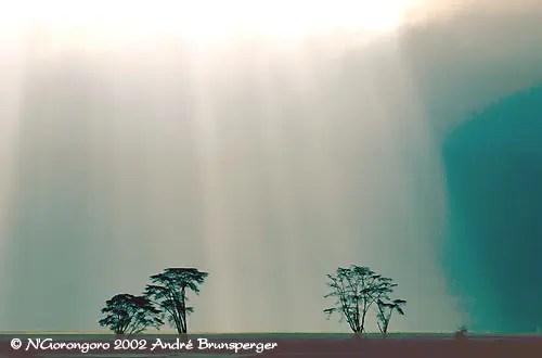 Voyage tanzanie pas cher. cratère du N'gorongoro en Tanzanie