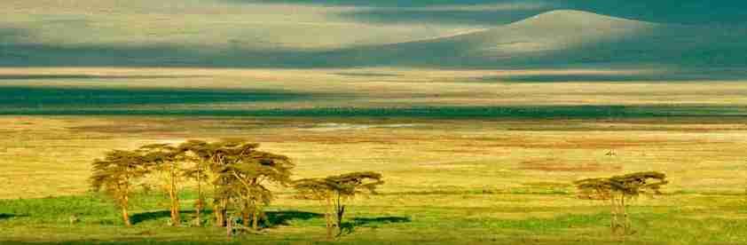 voyage de noces safari. Cratère du N'Gorongoro en Tanzanie