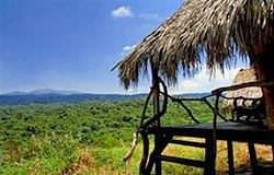 Tente sous paillote a Forest Camp, Tanzanie