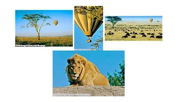 Voyage de noces safari tanzanie plus Zanzibar