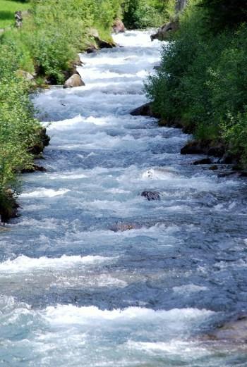 Fluss_Rein_in_Taufers