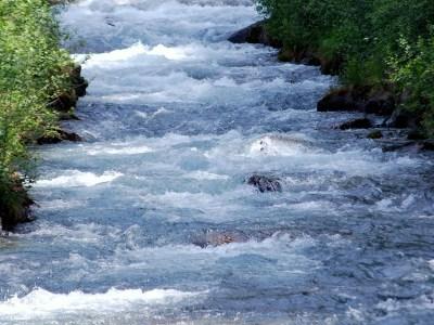 Im Puls … pulsierend, im Fluss … fließend – Nachklang