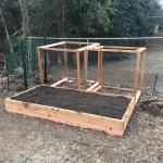 Building a Garden Day
