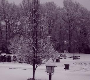 Winter wonderland again 0002