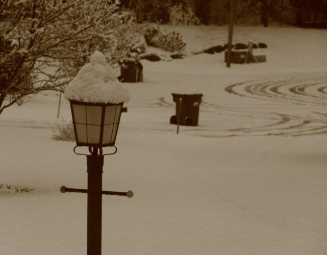 Winter wonderland again 0006