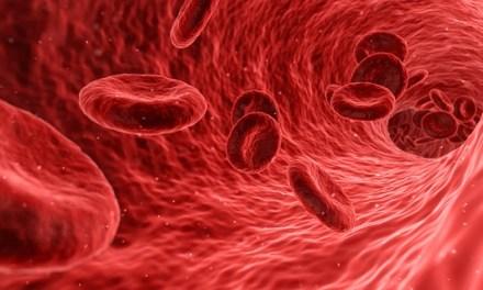 Enzymaktivität stellt das Blutbild wieder her