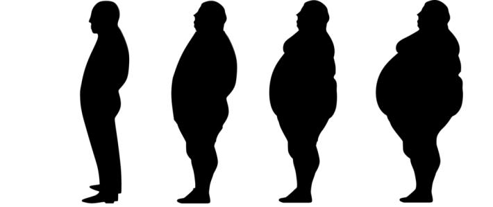 Crash Diet - Your metabolism - slim to fat