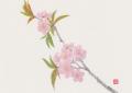 """""""Spring"""" Sumi-E"""