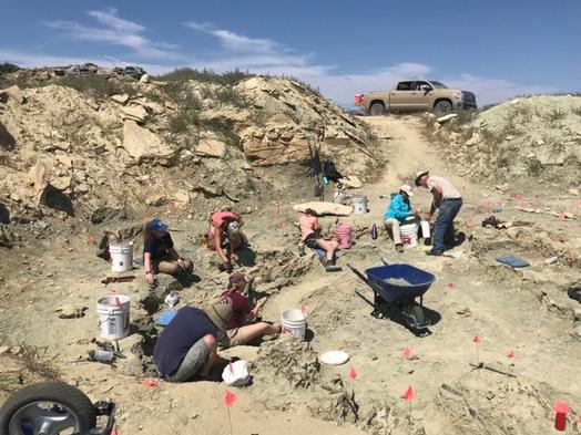 Toyota Helps Paleontologists get to Dinosaurs in Wyoming