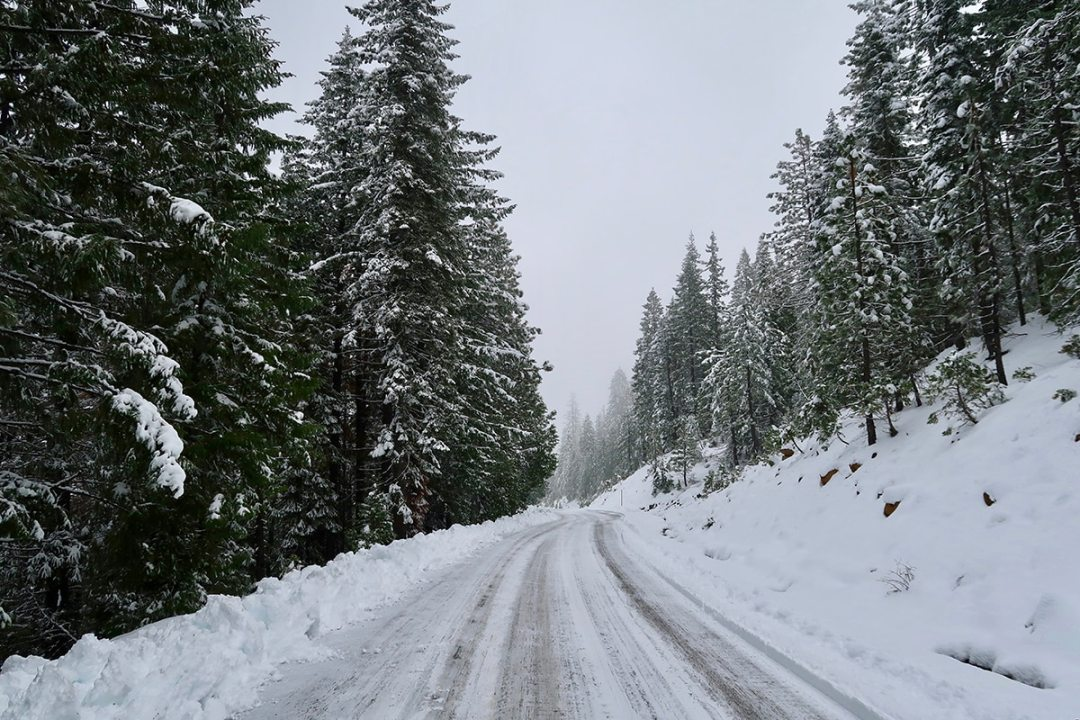 traveling in cold weather through mountain road covered in snow with trees