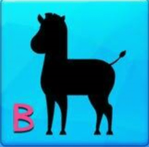 Find the Correct Silhouette Answers