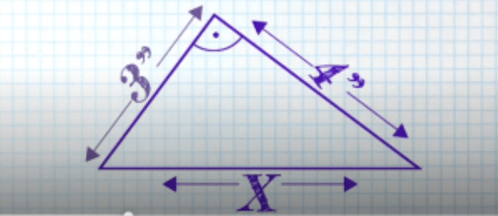 video math quiz video facts answers