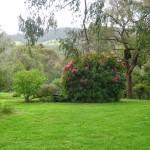 ambledown garden-150x150