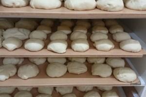 sanctuary pizza dough