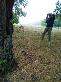 Hiker taking a photo of a tree.