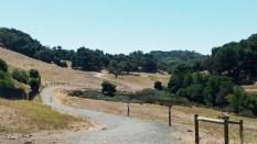 Park hiking trail.