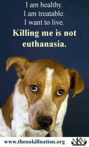 Euthanasia is ...killing someone who is very sick or injured in order to prevent any more suffering. ~Merriam Webster Dictionary